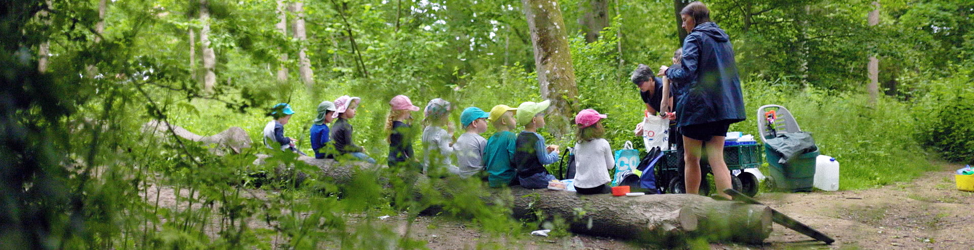 Jigsaw children in local woodland for Woodlands Explorers